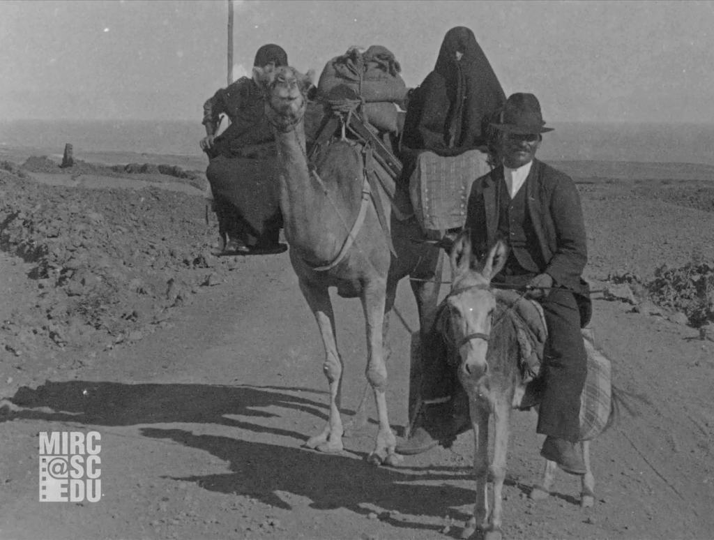 FOX 1925. CAMINO ARRECIFE